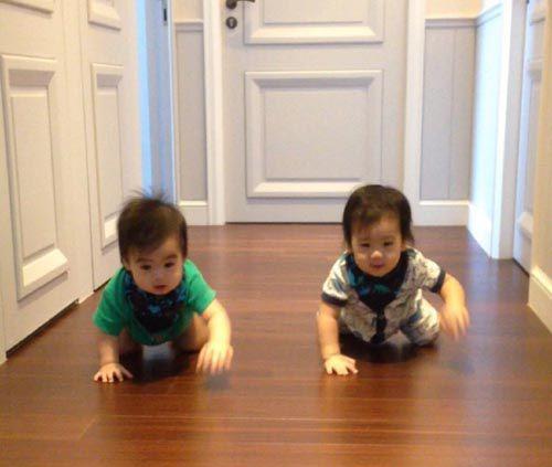 林志颖晒双胞胎儿子照片 感叹不想因为工作错过儿子们成长