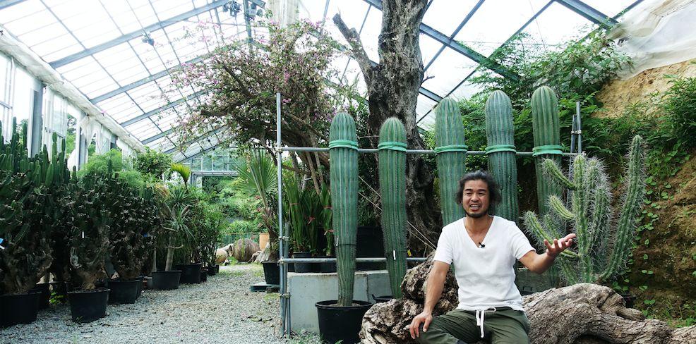 """他是孤独的""""植物猎人"""",每年行走距离可绕地球10圈"""