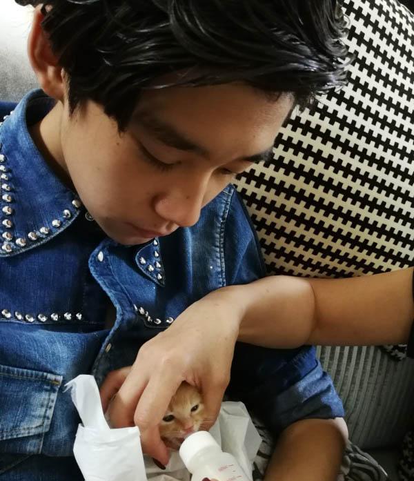 【图】许亚军晒大儿子喂小猫照片 基因强大一代更比一代强