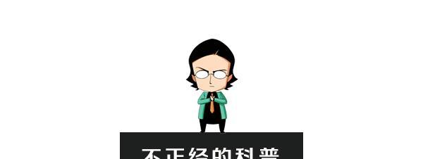 《本人娶刘亦菲的可行性报告》