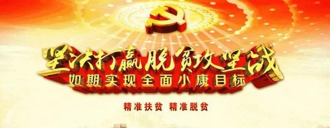 张喆调研饮水项目工程推进情况