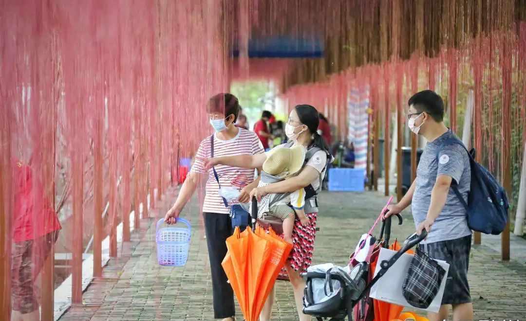 葡萄满枝头,游客采摘忙,丰华园举办第五届葡萄文化节