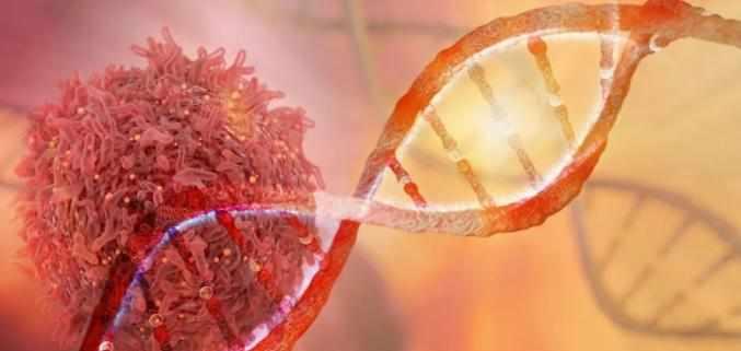 Nature子刊:人体必需的微量元素硒,竟是癌细胞毒药