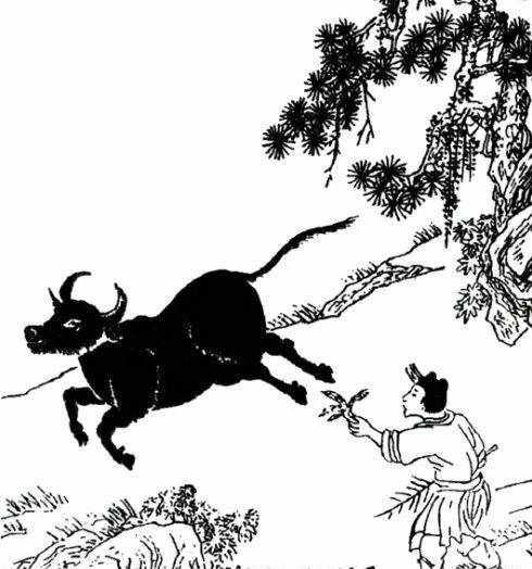 南怀瑾:《牧牛图》讲解