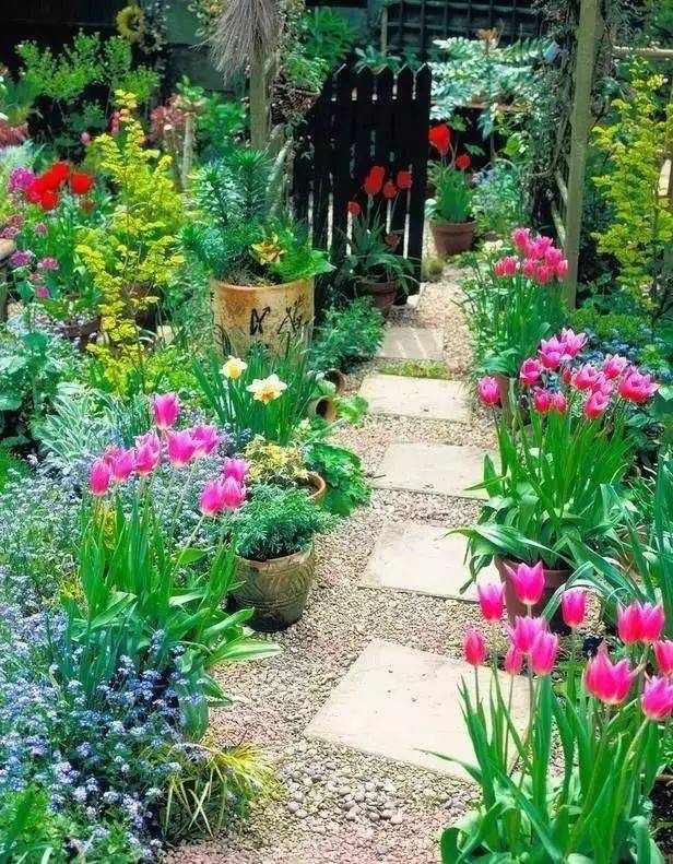 33种常见花境类型+营造干货,让你造一个好的花境