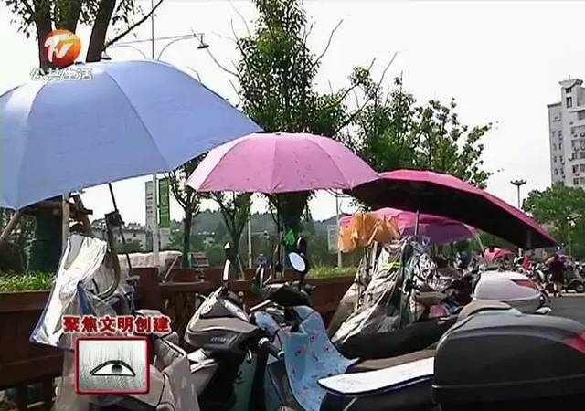 电动车装雨篷 你怎么看?