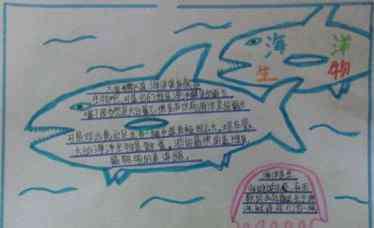 关于海洋的手抄报 海洋科普知识的手抄报四年级