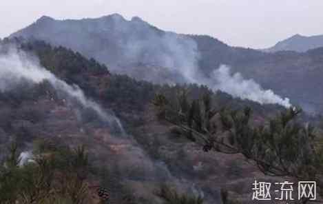 火灾致人死亡的主要原因是什么 甘肃突发森林火灾 火灾中致人死亡的最主要原因是什么