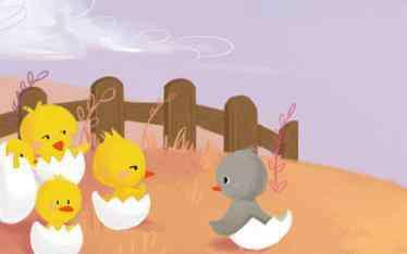 小鸭子的故事 小鸭子的故事