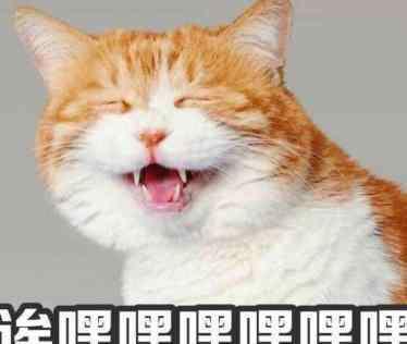 李兰 嘿李兰妈妈是什么梗 嘿李兰妈妈是哪首英文歌
