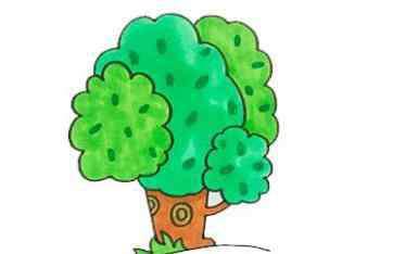 幼儿简笔画图片带颜色 幼儿园关于大树儿童画怎么画 幼儿园大树简笔画图片带颜色