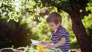4岁宝宝早教 四岁宝宝教育