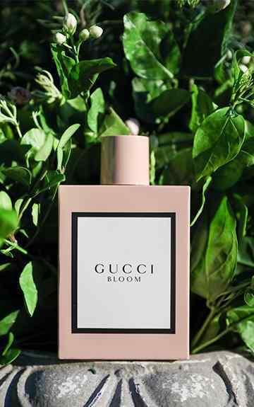 古驰女士香水 古驰于上海举办Gucci Bloom花悦女士香水系列发布派对